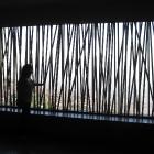 Andrea into the España Library