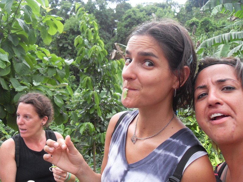 Núria experiencing coca leaves