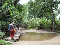 Walking to Tayrona