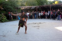 Maori warrior during the traditional challenge