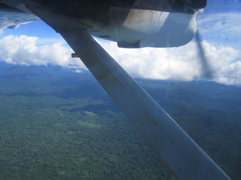 Darién\'s jungle between Panama and Colombia