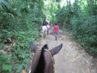 My horse, riding to Tayrona